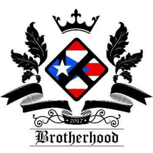 brotherhood reborn kodi addon